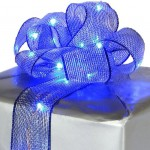 fairy lights ribbon