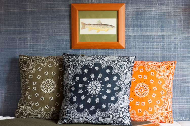 Most Amazing Bandana Pillows
