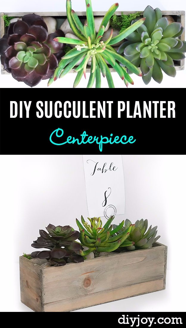 DIY Kitchen Decor Ideas - DIY Succulent Planter Centerpiece - Creative Furniture Projects, Accessories, Countertop Ideas, Wall Art, Storage, Utensils, Towels and Rustic Furnishings http://diyjoy.com/diy-kitchen-decor-ideas