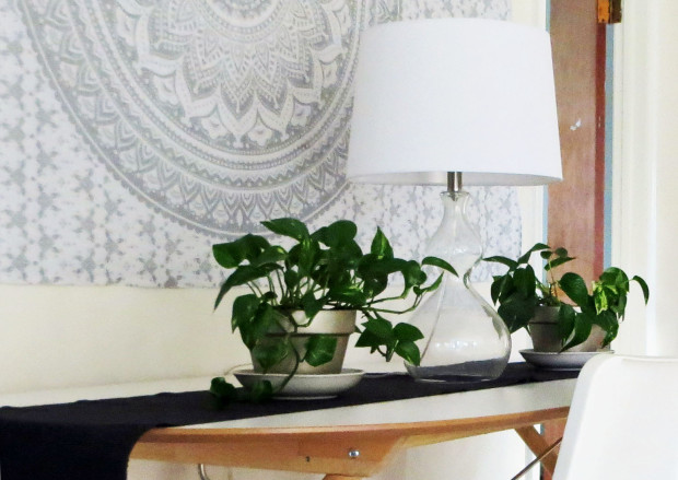good excuses first-time home buyer The Decor Guru sneak peek teaser dining room Valspar Cozy White paint pothos houseplants mandala wall tapestry