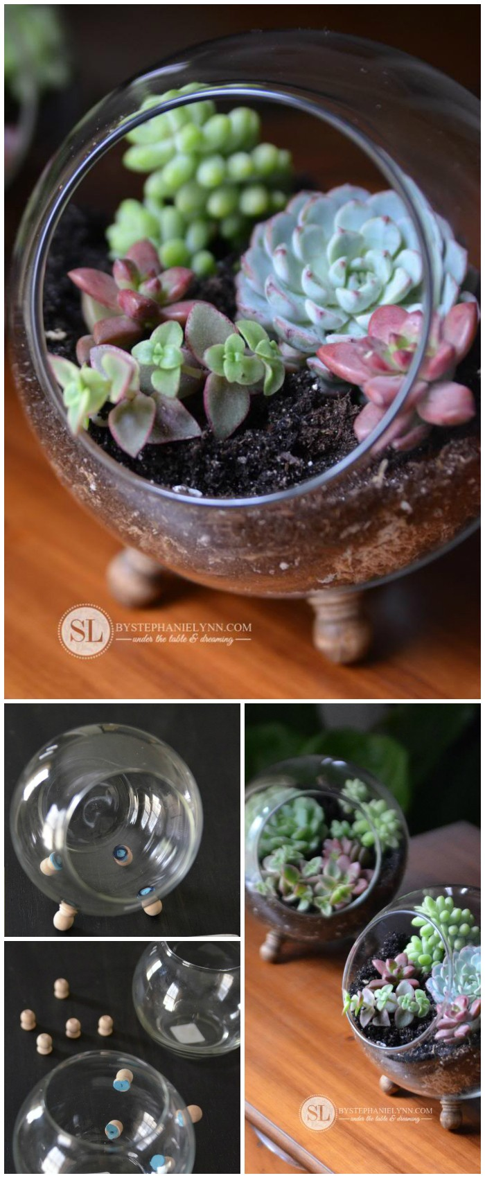 Glass Globe Terrarium Cheap DIY Projects For Your Home Decoration