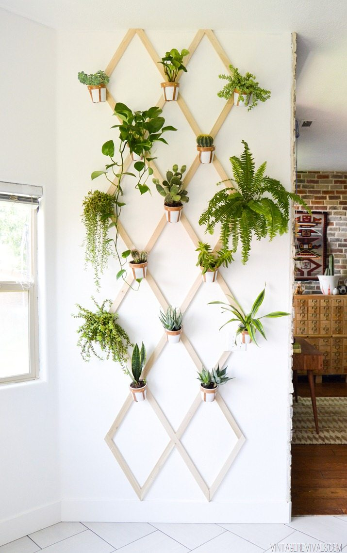 Indoor Plant Trellis Wall DIY