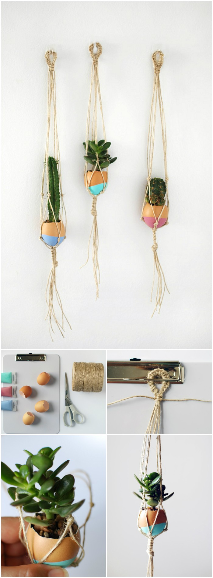 Succulent Egg Plant Hangers Cheap DIY Projects For Your Home Decoration
